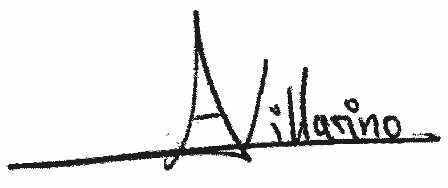 firma Ana Villarino